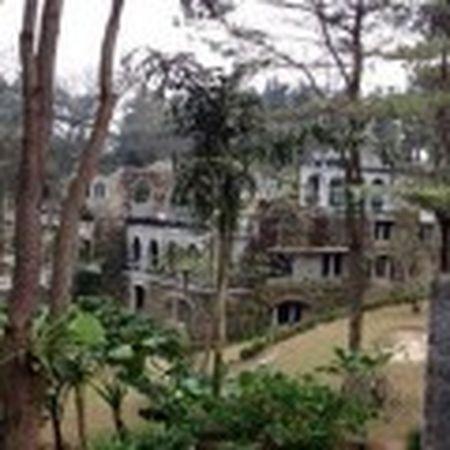 Vu xay resort khong phep giua Vuon Quoc gia Ba Vi: Chu dau tu thua nhan sai sot - Anh 6