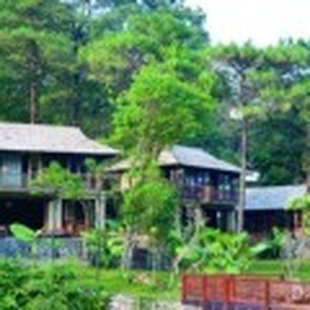 Vu xay resort khong phep giua Vuon Quoc gia Ba Vi: Chu dau tu thua nhan sai sot - Anh 9