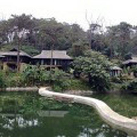 Resort trai phep tai Ba Vi: Tong cuc Lam nghiep biet nhung chua trinh phe duyet - Anh 3