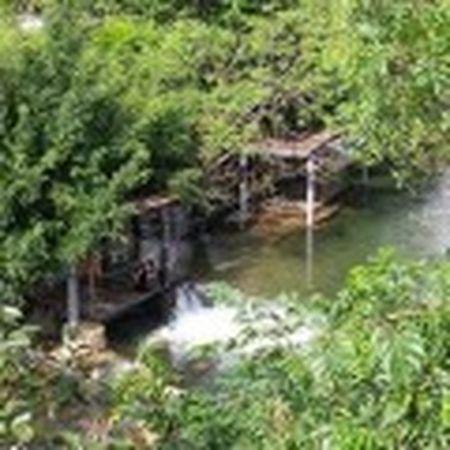 Resort trai phep tai Ba Vi: Tong cuc Lam nghiep biet nhung chua trinh phe duyet - Anh 7