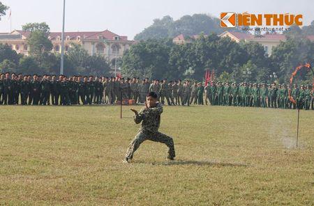 "Man nhan vo thuat ""dinh"" cua dac cong Viet Nam - Anh 8"