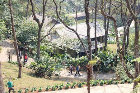 Xay resort o Vuon Quoc gia Ba Vi: Ne nang nen de lam bua - Anh 1