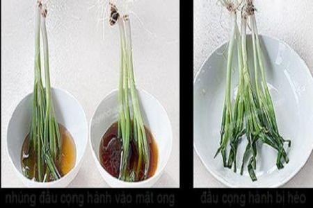 10 meo hay giup phan biet mat ong that va gia - Anh 3