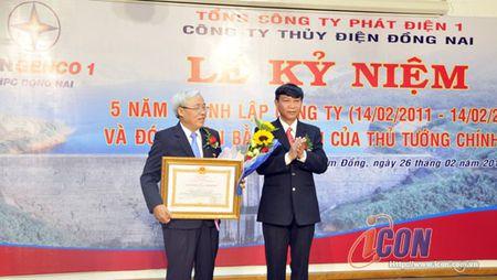 Cty Thuy dien Dong Nai don nhan Bang khen cua Thu tuong - Anh 1