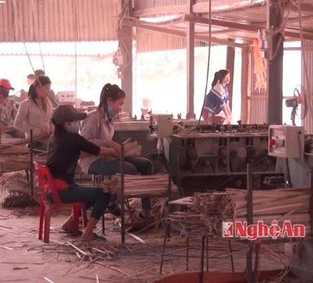 Doan doanh nghiep Nhat ban tim hieu dau tu tai Que Phong - Anh 2