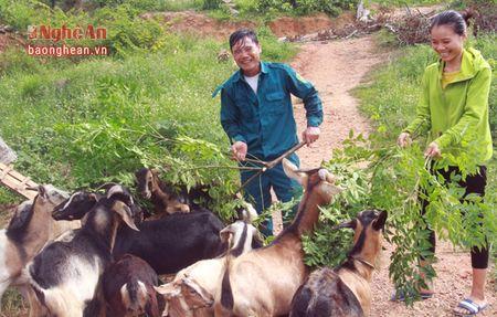 Nhung trieu phu tre tren vung Phu Quy - Anh 1