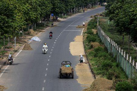 Dai lo hien dai nhat Viet Nam thanh san phoi - Anh 1