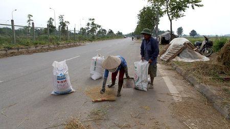 Dai lo hien dai nhat Viet Nam thanh san phoi - Anh 5