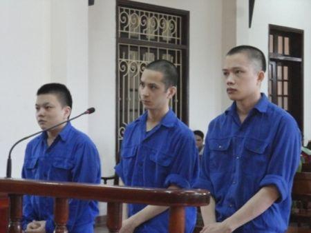 "Hai Phong: ""Tuyen an"" co quan tien hanh to tung - Anh 1"