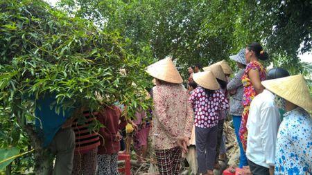 Nguoi dan ong nam chet phia sau vuon, khong manh vai che than - Anh 1