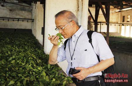 Doanh nghiep Nhat Ban khao sat 1 so mo hinh nong nghiep Nghe An - Anh 4