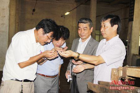 Doanh nghiep Nhat Ban khao sat 1 so mo hinh nong nghiep Nghe An - Anh 5