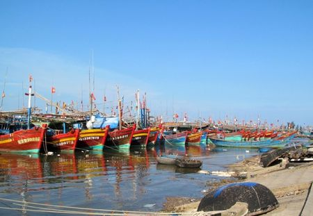 Ngu dan Canh Duong de nghi dung hoat dong cua Formosa - Anh 1