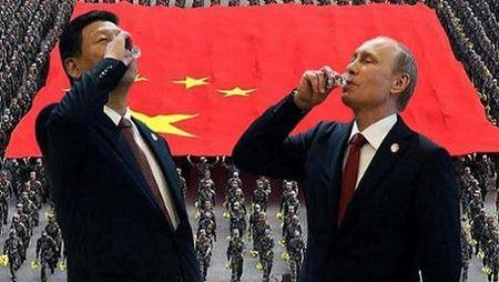 Putin ung ho Trung Quoc phan doi PCA: Bien minh nuoc doi - Anh 1
