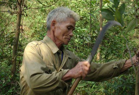 Tang tuoi nghi huu de ung pho gia hoa: Khong de thuc hien - Anh 1