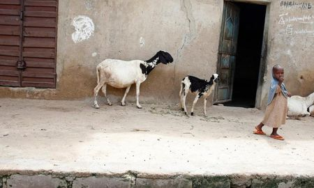 Cuoc song nguoi dan Nigeria khon kho vi khung bo Boko Haram - Anh 6