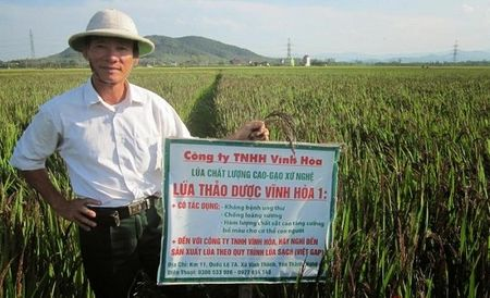 'Phu thuy' bien gao thanh thao duoc quy - Anh 2