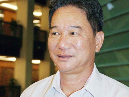 'Biet phu' khong phep o Co do Hue: Cu xu nghiem, kieu gi cung lo! - Anh 1