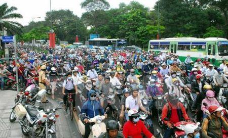 Cam xe tai luu thong tren duong ket noi vao san bay Tan Son Nhat: Doanh nghiep len tieng - Anh 1