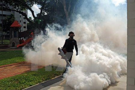So ca nhiem virus Zika o Singapore van tiep tuc tang nhanh - Anh 1