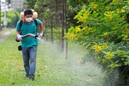 Xac minh them thong tin ve nguoi Viet nhiem zika tai Nhat Ban - Anh 1