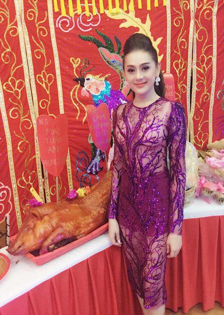 Lam Chi Khanh mac xuyen thau lo noi y di cung To nghe - Anh 2