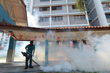 Zika lay lan tai Dong Nam A: Moi lo dai dich bung phat - Anh 1