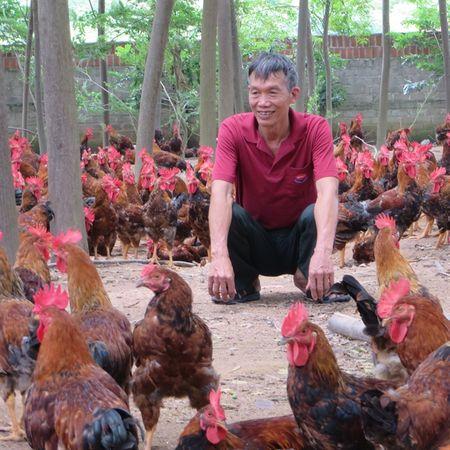 Binh Xuyen dang rat gan toi moc can dich NTM - Anh 2