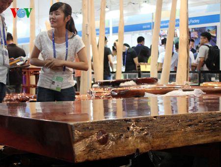 Ngam nhung san pham doc dao tai Hoi cho CAEXPO 13 - Anh 13