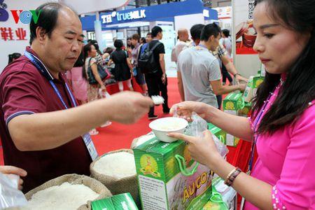 Ngam nhung san pham doc dao tai Hoi cho CAEXPO 13 - Anh 6