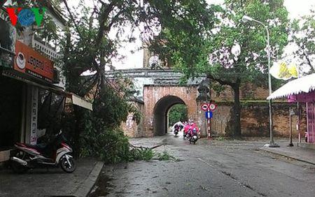 Quang Nam khan truong chong ngap ung sau bao so 4 - Anh 2