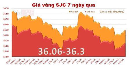 Gia vang SJC tang lan dau sau 6 phien lien tiep giam - Anh 1