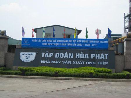 Tap doan Hoa Phat: Lai 9 thang gap ruoi ke hoach nam - Anh 1