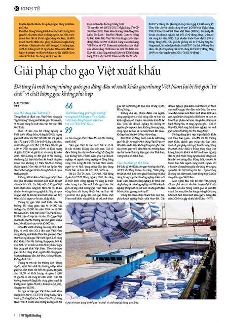 Giai phap cho gao Viet xuat khau - Anh 2