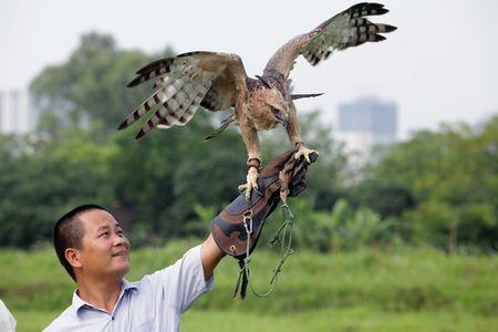 Nhung loai chim quy gia 'khung' dai gia Viet manh tay vung tien mua - Anh 5