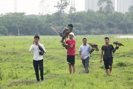 Nhung loai chim quy gia 'khung' dai gia Viet manh tay vung tien mua - Anh 6