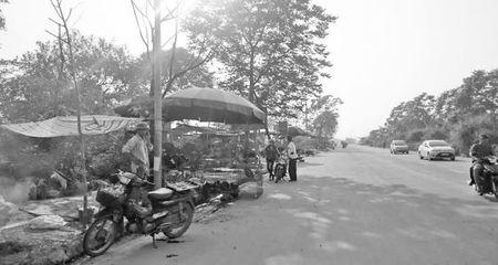 Thoi xa vang va nhung nguoi muu sinh o pho chim troi Ngoc My - Anh 1