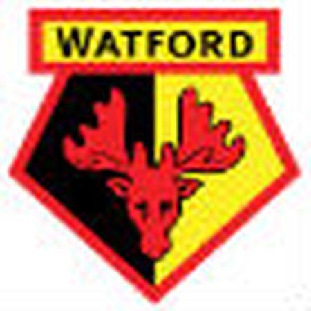 Chi tiet Watford - Tottenham: No luc muon mang (KT) - Anh 1