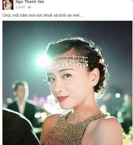 My nhan Viet dong loat gui loi chuc mung nam moi 2017 - Anh 10