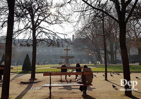 Paris nhung ngay dau tien cua nam moi 2017 - Anh 14