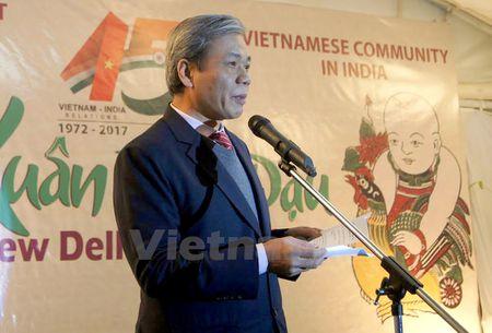 Su quan Viet Nam ky niem 45 nam ngoai giao Viet Nam-An Do - Anh 1