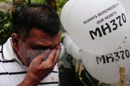 Malaysia cho phep tu nhan tham gia tim kiem may bay MH370 - Anh 1