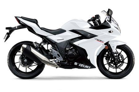 Chi tiet Sportbike Suzuki GSX250R gia 101 trieu dong - Anh 5