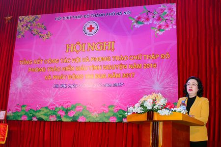 Hoi Chu thap do Ha Noi van dong duoc hon 181 ty dong trong nam 2016 - Anh 1