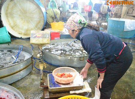 Cho ca Ha Noi tap nap truoc ngay cung ong Cong ong Tao - Anh 10