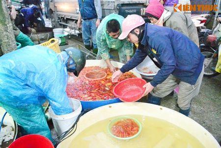 Cho ca Ha Noi tap nap truoc ngay cung ong Cong ong Tao - Anh 13