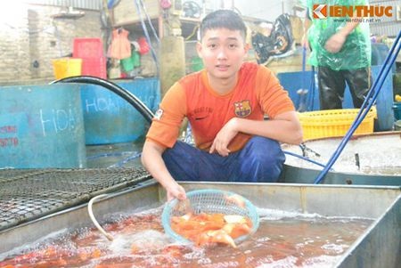Cho ca Ha Noi tap nap truoc ngay cung ong Cong ong Tao - Anh 7