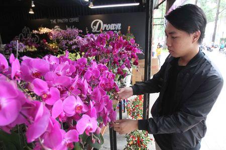 Thi truong hoa Tet tang nhiet - Anh 2