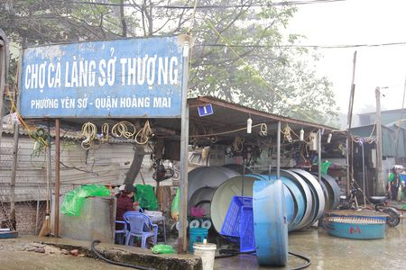 Can canh cho ca ong Cong, ong Tao lon nhat Ha Noi - Anh 1