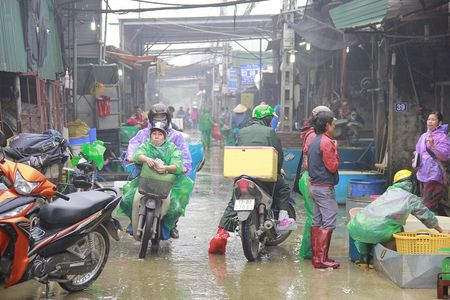 Can canh cho ca ong Cong, ong Tao lon nhat Ha Noi - Anh 2